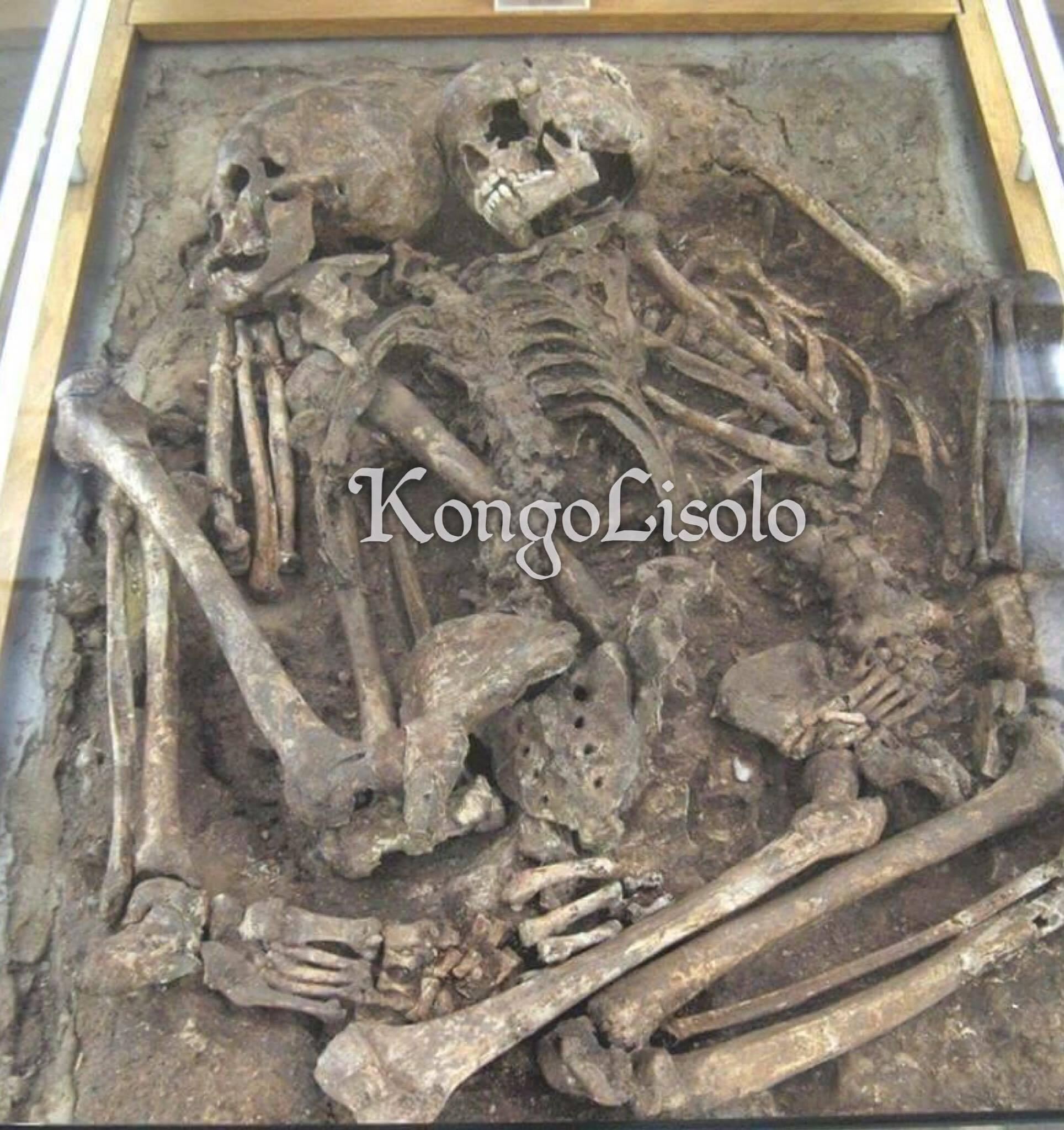Bay manti, vyolans ak kamouflaj yo se espesyalite yo: paleoanthropology franse reklamasyon yo te jwenn yon dan fin vye granmoun 560 000 ane ki ta ka fè pati nan zansèt yo blan.