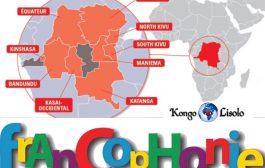 Voici ce que les occidentaux pensent de la RDC ... (VIDÉO)