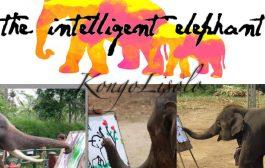 Le niveau d'intelligence de cet éléphant est incroyable ! ... (VIDÉO)