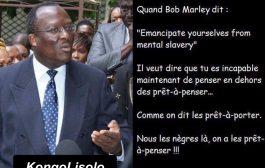 Quand Bob Marley dit : « Emancipate yourselves from mental slavery » ... Il veut dire que tu es incapable maintenant de penser en dehors des prêts-à-penser