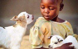 Un bon être humain (africains) peut avoir non seulement les mains propres; Mais doit avoir aussi un esprit pur