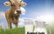 Éthiopie : souffler dans le cul d'une vache pour avoir du lait ... (VIDÉO)