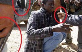 Voici un Africain, chasser sur ses propres terres occupées par les bâtards, des Arabes … (VIDÉO)
