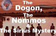 डोगों के सिद्धांत: हम वहां अच्छे से थे, हमारे जल्लादों से पहले, जर्जर आवारा, जो खुद को डॉक्टर समझते हैं