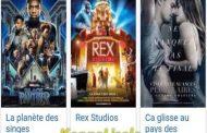 Google France, raciste : le week-end du 10 janv,2018, de nombreux internautes de France, Belgique, Europe ont constaté, lorsqu'ils effectuaient des recherches sur Google France à propos de la programmation cinématographique de certaines salles. L'affiche du film « Black Panther » sur les super-héros noirs est apparue avec le titre ci-après : « La suprématie de la planète des singes » ... (VIDÉO)