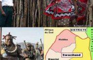 Le roi Mswati du Swaziland, dernier monarque d'Afrique, a annoncé avoir changé le nom de son pays, qui s'appellera désormais « eSwatini »
