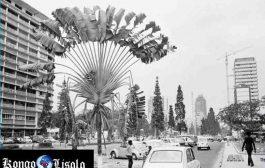 Photo souvenir « Zaïre Kinshasa 1974 » : Ce qui a été, c'est ce qui sera, et ce qui s'est fait, c'est ce qui se fera, il n'y a rien de nouveau sous le soleil
