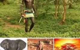 L'Homme naturel: L'Homme à l'état de nature, Un élément de la nature « L'homme créateur de la culture, Une aberration mutilatrice »