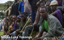 Arrivée massive des soldats FARDC (Tutsis ) dans les grandes villes du Nord de l'équateur ; Lisala, Bumba Gemena, Akula, Zongo, Karawa, et Businga