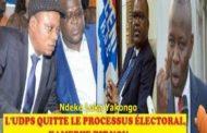 Le Directeur de campagne de Felix Tshisekedi, Vital Kamerhe est très critiqué à l'UDPS dans sa stratégie de campagne
