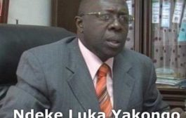 क्रिश्चियन Mwando Nsimba काबुलो कहते हैं: फेलिक्स Tshisekedi एक महान व्यक्ति है जिसके लिए मेरे पास बहुत सम्मान है
