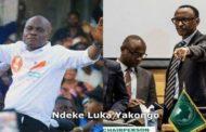 La coalition Lamuka au Rwanda invite Martin Fayulu à venir prêter serment, devant la population au stade Afya de Goma dans les prochains jours : « Pour plus d'information à regarder sur RFI, Oui à regarder sur RFI » ... (VIDÉO)
