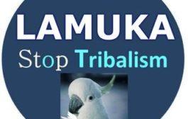 Le tribalisme grandissant en RDC : Lamuka et Martin Fayulu envisagent mettre le pays sous le cahot afin d'empêcher les investisseurs de venir au Congo-Kinshasa ... (VIDÉO)