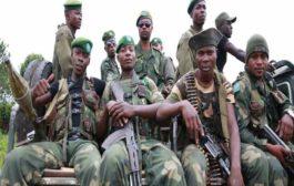 Une rébellion serait en gestation contre la République démocratique du Congo à partir de la Belgique : un grand complot visant à déstabiliser les institutions nouvellement établies en RDC se prépare à Bruxelles