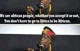 À tous les afro descendants : chers afro-américains, nous sommes tous Africains que vous l'acceptiez ou non « Vous n'êtes pas obligés d'aller en Afrique pour être Africain »