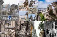 La justification des gargouilles aux édifices religieux : depuis l'incendie qui a ravagé la Cathédrale Notre Dame de Paris, le 16 avril 2019, d'aucuns se posent la question de savoir pourquoi la présence des gargouilles aux édifices religieux