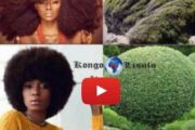 Do Black / African women know that keeping their natural hair means being in harmony with nature in its essence? ... (VIDEO)