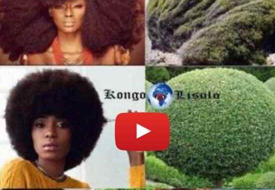 क्या अश्वेत / अफ्रीकी महिलाओं को पता है कि उनके प्राकृतिक बालों को रखने का मतलब है कि प्रकृति में इसका सार है? ... (वीडियो)