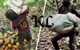 Nestlé s'enrichit sur les dos des enfants ivoiriens: Les thèses de l'exploitation de l'homme par l'homme de Karl Marx sont encore d'actualité