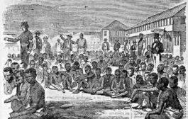 Devoir de mémoire : le 8 janvier 1454, est le jour où le Vatican & le Pape Nicolas V, Tommaso Parentucelli (1398 - 1455) « Autorisa l'esclavage ». Déclara la guerre sainte contre l'Afrique dans sa bulle papale « Romanus Pontifex » ... (VIDÉO)