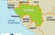 "The origin and uses of the word ""Guinea"": the name of three African countries, the word Guinea is also used in other cultures, sometimes meaning ""Unexpected"""