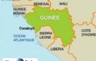 L'origine et les usages du mot « Guinée »: nom de trois pays d'Afrique, le mot Guinée est aussi utilisé dans d'autres cultures, avec une signification parfois « Inattendue »