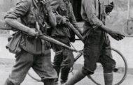 Guerres mondiales : les Noirs/Africains ont servi de boucliers humains pour sauver les puissances alliées; leur nombre n'est pas connu exactement; cependant, ils ont été des centaines, des milliers et pourquoi pas des millions de Noirs qui luttaient en première ligne pour le compte des puissances alliées lors des 2 guerres mondiales ( 1914-1918 et 1939-1945)