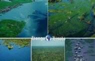 """נהר קונגו: עמוד השדרה האמיתי של הרפובליקה הדמוקרטית של קונגו """"DRC היא מדינה מפוארת המכילה נכסי טבע עצומים כולל נהר קונגו המופלא"""" זהו החזק ביותר באפריקה"""