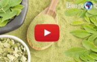 Togo : connaissez-vous le moringa ? Le moringa est un arbre exotique naturalisé et cultivé dans de nombreux pays tropicaux, le moringa a un potentiel énorme, son intérêt est diététique, agronomique et médicinal ... (VIDÉO)