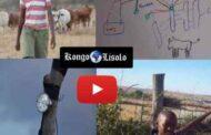 Devoir de mémoire : comment un tout petit est parvenu à mater les lions du Kenya ? À seulement 11 ans, Richard Turere a trouvé un moyen de dissuader les lions d'attaquer son bétail et sa famille en imaginant une astuce ingénieuse ... (VIDÉO)