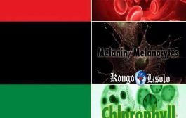 Rouge comme le sang, noir comme la mélanine, vert comme la chlorophylle: le monde naturel est en nous comme il est en dehors de nous, mais tout est contenu dans la terre