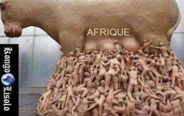 L'Afrique meurt de faim, mais elle nourrit toute la planète : « Le grand succès des ennemis de l'Afrique, c'est d'avoir mis les traîtres à la tête des Etats africains, après avoir éliminé méthodiquement les dirigeants souverainistes qui voulaient développer ce continent »